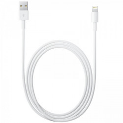 Cable iPhone - iPad Original Apple long. 2m conect. Lightning - Apple MD819ZM/A pour Apple iPhone 6