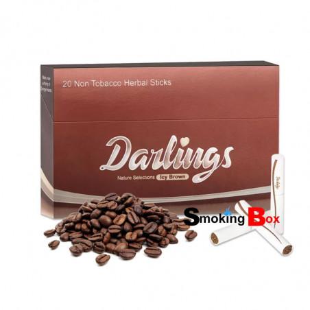 Icy Brown (Café bar) Stick heets (HNB) aux herbes sans tabac - Darlings - Compatible IQOS