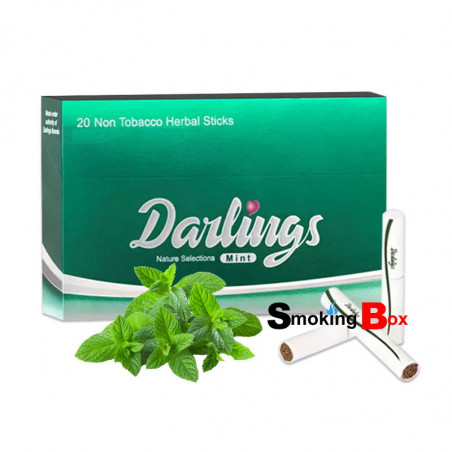 Icy Green (Mint - Menthe) Stick heets (HNB) aux herbes sans tabac - Darlings - Compatible IQOS